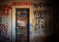 Painted Wall (D. Coleman Photography) Tags: north philadelphia philly gretz brewery abandoned wall bricked up paint spray graffiti tags vandal vandalism graff street art photography decay ruins peeling old beautiful rough gritty dark shadows gloomy moody color colorful canon rebel xsi