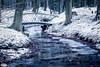 Bridge over Beekhuizense beek (Jaap Mechielsen) Tags: sneeuw longexposure thenetherlands winter natuurgebied velp gelderland nederland beekhuizen bos europe waterval veluwezoom europa forest snow waterfall wood woods nl