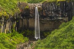 Svartifoss (Black Falls) (Matt Champlin) Tags: water waterfall iceland canon 2016 nature landscape park beautiful hiking travel adventure peace peaceful enviornment pristine