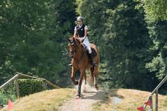 DSC05492_s (AndiP66) Tags: aarau aargau schweiz ch sony sonyalpha 77markii 77ii 77m2 a77ii alpha ilca77m2 slta77ii sony70400mm f456 sony70400mmf456gssmii sal70400g2 andreaspeters springen samstag saturday 11juli2015 july aargaucanton jumping springreiten pferdespringen equestrian sports pferdesport sport 2015 juli pferd horse switzerland kantonaargau cantonofaargau concours contest wettbewerb horsejumping