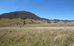 1300 Sandy Creek Road, McCullys Gap NSW