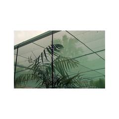 SBH-04 (sm0r0ms) Tags: france film analog landscape photography kodak olympus portra om1 160 2015 autaut