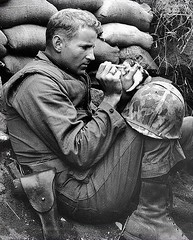 U.S. Marine Sergeant Frank Praytor, Korea 1953 (Peer Into The Past) Tags: peerintothepast kindness compassion vintage semperfi marinecorps marines usmc 1953 kitten mascots military history theforgottenwar koreanwar