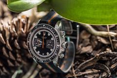 IMG_0291 (store.vip2010) Tags: chrono heritage montecarlo tudor