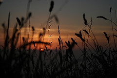 Finisterre sunset (natalia.grubio) Tags: galicia riasbaixas riasbajas cabo mar finisterre nubes atardecer naturaleza sol agua reflejos cielo sunset sea water clouds spain sky fisterra airelibre nube paisaje montaña puestadesol