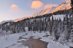 Late Afternoon in the Wheaton Valley (kdee64) Tags: wheatonvalley wheatonriver january winter yukon northerncanada