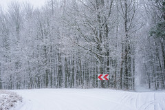 Znak (daamiank) Tags: winter zima polska nikon d610 50mm śnieg czerwony red las sing znak poland forest