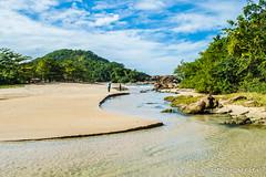 Água doce chegando ao mar... (Carrara, R.) Tags: allnaturesparadise river rj litoral travel brasil nikon