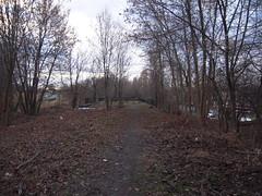 DSCN5043 (TajemniczaIstota761) Tags: abandoned railway viaduct wiadukt kolejowy