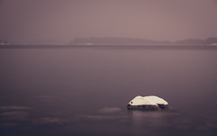 Melancholy (Bunaro) Tags: melancholy snow capped stone sea water freeze frozen cold winter helsinki suomi finland uutela landscape abstract