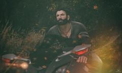 Logan~Freedom (Skip Staheli CLOSED FOR CLIENTS) Tags: skipstaheli secondlife sl avatar virtualworld digitalpainting motor bike road loganraff speed