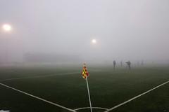 RFC LIÈGE - Chatelet 2016-17 (RFC LIEGE PICTURES) Tags: royalfootballclubliégeois royal football club liegeois liege liège luik lüttich liegi lieja rfcl chatelet