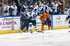"Missouri Mavericks vs. Wichita Thunder, February 3, 2017, Silverstein Eye Centers Arena, Independence, Missouri.  Photo: John Howe / Howe Creative Photography • <a style=""font-size:0.8em;"" href=""http://www.flickr.com/photos/134016632@N02/32591262721/"" target=""_blank"">View on Flickr</a>"