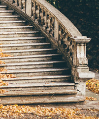 Stairway to... (freyavev) Tags: beograd belgrade centar terazije serbia srbija grainy 50mm leaves autumn orange stairs stairway staircase detail urban urbandetails outdoor mikasniftyfifty niftyfifty vsco