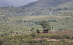Serra das Russas, PE (pmenge) Tags: postes casa árvore 70200 tc14 7dii