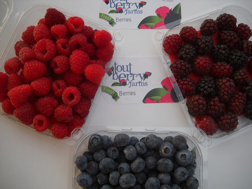 Raspberry & Boysenberry & Blueberry First Tout Berry package bb May 21, 2015