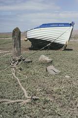 Harvest Moon (ShrubMonkey (Julian Heritage)) Tags: coast boat rope coastal devon lowtide nautical harvestmoon a7 exmoor porlockweir
