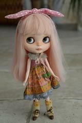 Miss Rose...