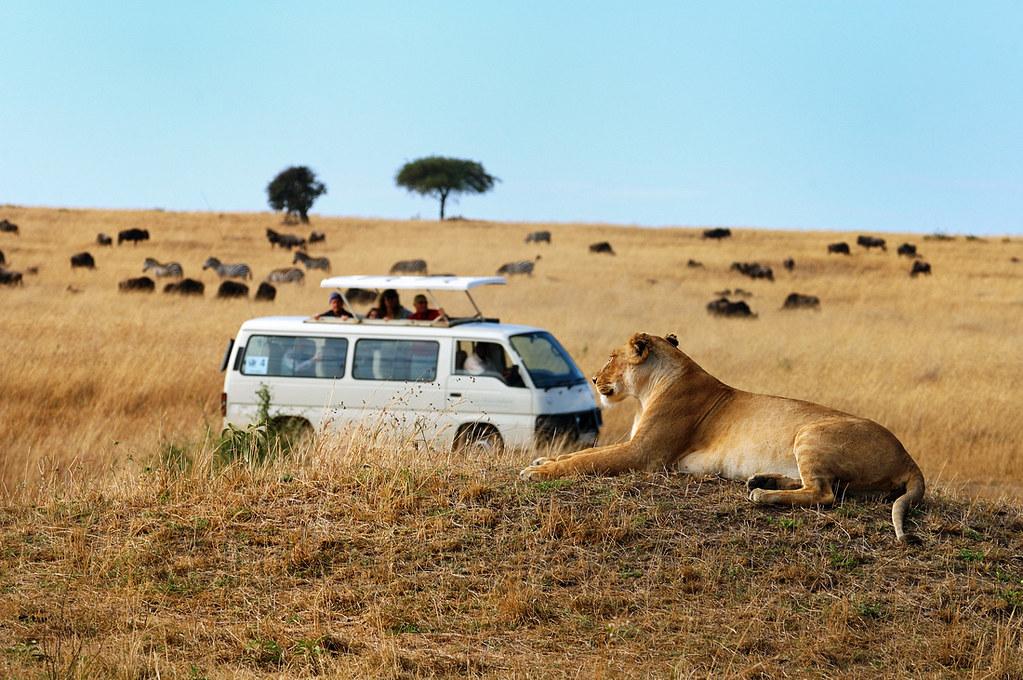 safari-expeditions