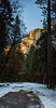 Path to Half Dome (Maxinux40k) Tags: 2016 afs1424mmf28ged california d810 december goldenhour halfdome landscape mitchellcipriano nationalpark nature nikkor nikon outdoors sierra sierranevada sky trees winter yosemite mountain outdoor path
