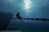 Humberto (mbfirefly) Tags: freediving underwater diving cayman water ci scuba kittiwake uw