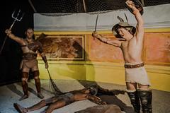 Trace and Reziario Victorius Over Murmillo! (silverfox_hwz) Tags: campania capua santamariacapuavetere amphitheatre anfiteatro ancientcapua gladiator gladiatormuseum