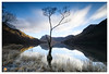 Lone Tree (StuG123) Tags: red lakedistrict lonetree buttermere lake mountains freezing tree longexposure littlestopper canon5dmkiv