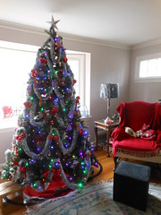 Family Christmas Tree, 2016 - Colored Lights (smaginnis11565) Tags: christmas christmastree christmas2016 livingroom coloredlights modelrailroad