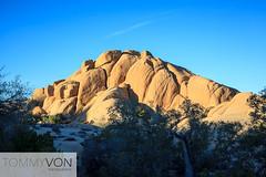 Joshua Tree National Park (tommyvon) Tags: joshua tree national park california ca desert