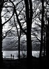 Loch Lomond (carolforsyth1) Tags: scotland lochlomond balmaha