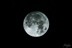 Full Moon (MGness / urbexery.com) Tags: moon lunar mond fullmoon 600mm