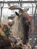 Goatee with a beard (mrwalli) Tags: goat goatee beard friendlychallenges
