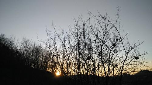 Tramonto #sunset