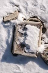 The Dusty Lake Ice Morning Photo Session 18 (Yossarian Lo Svedese) Tags: freddo gelo lago polverina neve ghiaccio abbandono