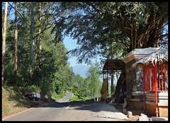 Munirsamy temple on roadside (Indianature st2i) Tags: valparai anamalais anamallais tamilnadu westernghats tea teaestate wildlife indianature india nature 2016 2017 paralai temple