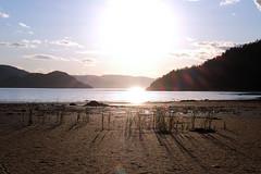 PDSCF1915 (Adzuki Darling) Tags: parc national du fjorddusaguenay september 2016