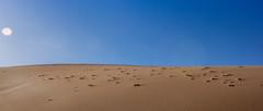 Atacama Dunes (matiasrquiroga) Tags: dunes desert deserted alone no people sky ground contrast sun daytime dry stones sand dust arena desierto solitario sin gente cielo tierra contraste sol día seco warm hot cálido piedras