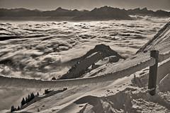 La mer de Brouillard au Valais , the sea of clouds view from the Rochers de Naye . Winter magic No. 6336 . (Izakigur) Tags: 2017 coldplay myswitzerland musictomyeyes swiss suiza suisia suizo suïssa svizzera switzerland dieschweiz d700 nikkor nikond700 nikkor2470f28 thelittleprince ilpiccoloprincipe lepetitprince izakigur flickr feel memories blackwhite alps alpes alpen alpi europa europe lasuisse laventuresuisse liberty clouds
