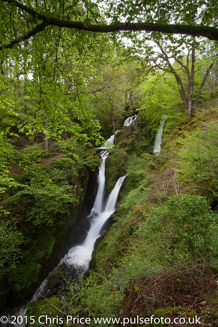 Stockgyhll Force