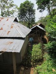 IMG_6371.jpg (Kuruman) Tags: house sylhet bangladesh haripur