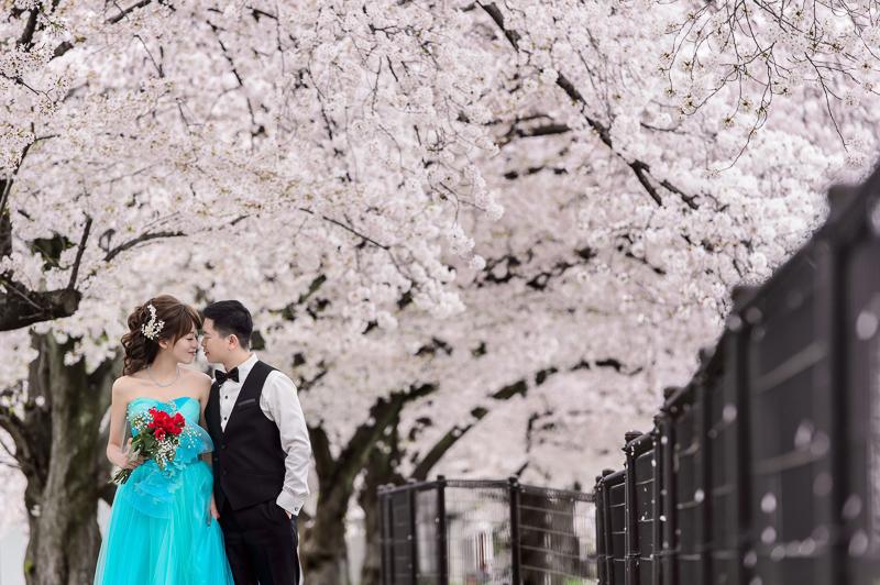 日本婚紗,京都婚紗,櫻花婚紗,新祕藝紋,cheri wedding,cheri婚紗,婚攝,cheri婚紗包套,海外婚紗,DSC_0011