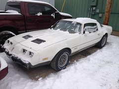 "1979 Pontiac Firebird • <a style=""font-size:0.8em;"" href=""http://www.flickr.com/photos/85572005@N00/19117196560/"" target=""_blank"">View on Flickr</a>"