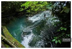 416 Hun Nal Ye - Coban ([nelo]) Tags: naturaleza mountain ro forest river guatemala bosque cenote manual gt montaa 16mm piedras 1250 f35 cobn iso500 2stars sacatepquez laantiguaguatemala canoneos6d hunnalye parqueeclogico expcomp1158 20150523 22242pm
