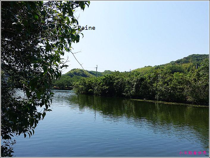 和歌山大池遊園-平池綠地公園 (4).JPG