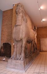 2015-05-20_WingedBull-118809 (athenacgy) Tags: london britishmuseum assyrian sargon khorsabad sennacherib