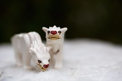 Winter is coming. (xxsjc) Tags: xxsjc toyphotography stuckinplastic legography lego warg thehobbit winter snow bokeh depthoffield direwolves got