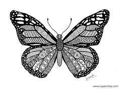 Monach Butterfly (ivysanchez14) Tags: art arte artwork artist artoftheday artistonflickr blackink butterfly zentangle zendoodle mandala mariposa illustration