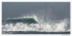 Le Goéland et la vague (Corine et Jean-Yves) Tags: mer océan vague ecume bretagne france