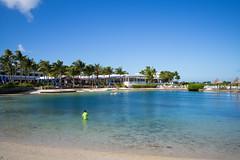 Hawks Cay Resort, Duck Key (romanboed) Tags: hawkscayresort leica m 240 28 usa florida duck key christmas winter travel sea beach seascape tourism america palms palm trees resort hotel morning summicron