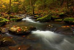 Down by the creek (MarcusDC) Tags: autumn flatlickcreek kentucky